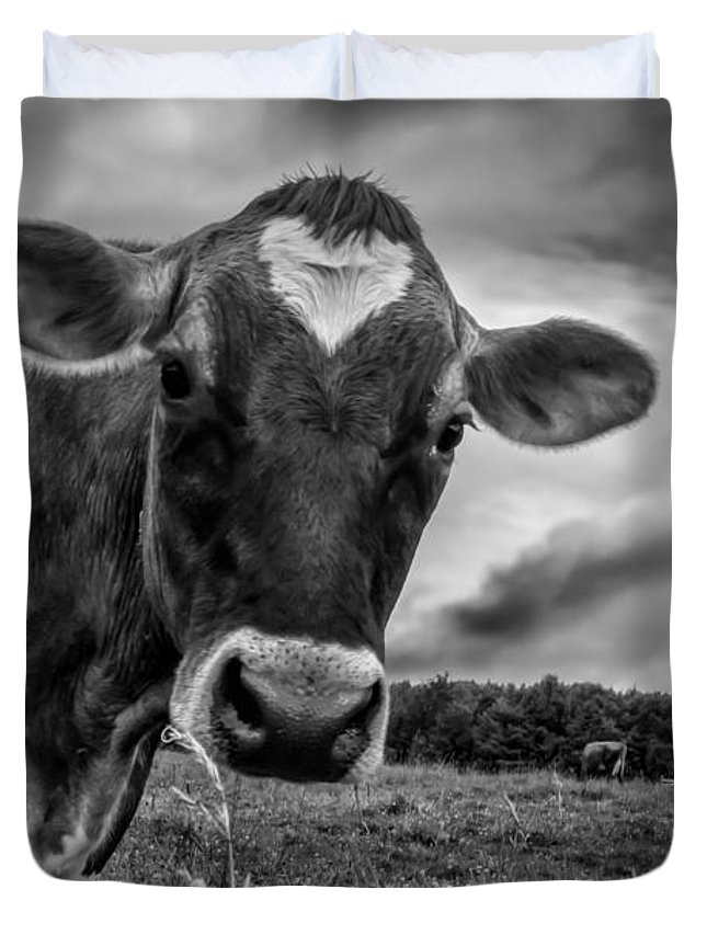 Cows Duvet Cover featuring the photograph She Wears Her Heart For All To See by Bob Orsillo