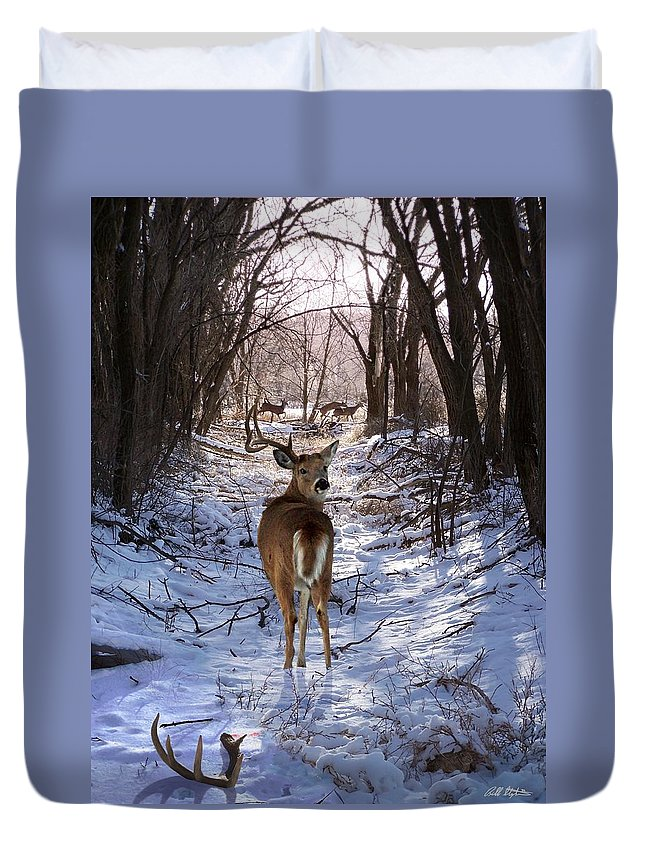 Deer Duvet Cover featuring the mixed media Shedding Time by Bill Stephens