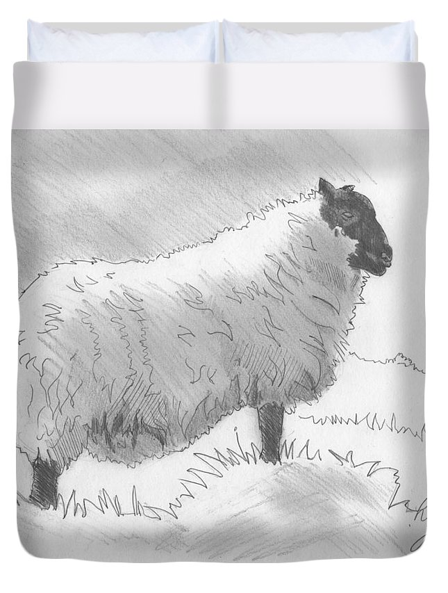 Sheep Duvet Cover featuring the drawing Sheep Sketch by Mike Jory