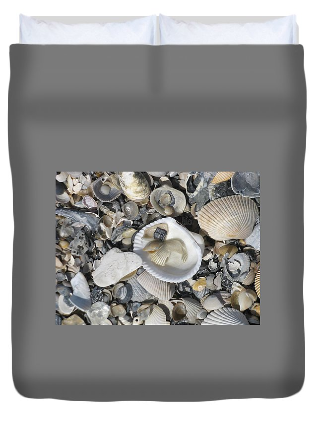 Landscape Duvet Cover featuring the photograph Shells In Shells 1 by Ellen Meakin