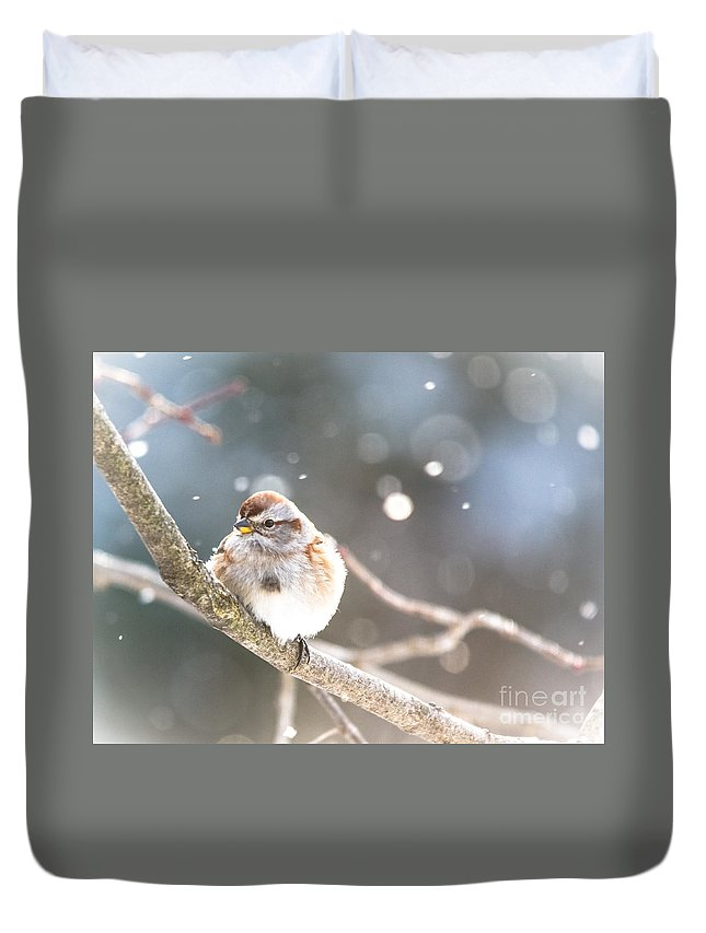 Duvet Cover featuring the photograph Shiny Tree Sparrow by Cheryl Baxter