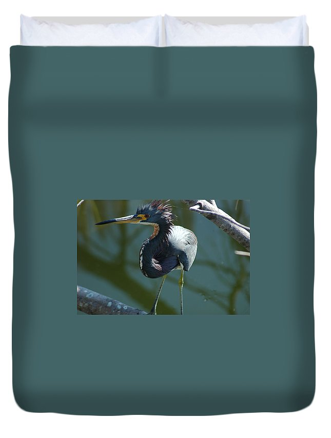 Egret Duvet Cover featuring the photograph Shiver by David Weeks