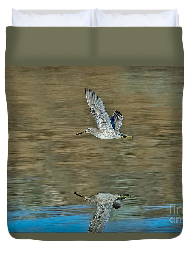 Short-billed Dowitcher Duvet Cover featuring the photograph Short-billed Dowitcher And Reflection by Anthony Mercieca