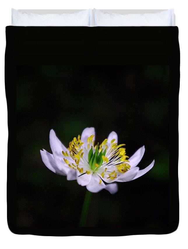 Flowers Duvet Cover featuring the photograph Side View Of A Tiny Paradise by Jeff Swan