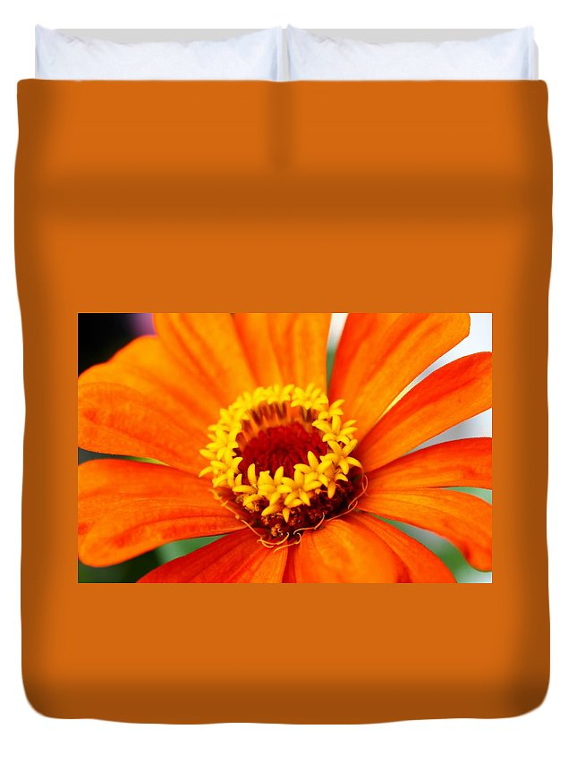 Flowers Duvet Cover featuring the photograph Silky Petal by Catie Canetti