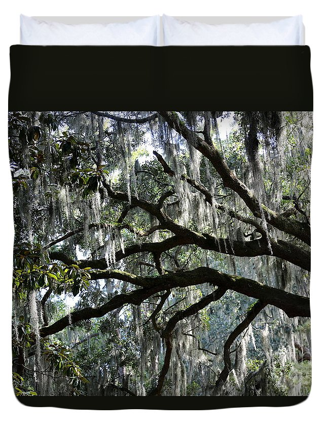 Tree Duvet Cover featuring the photograph Silver Savannah Tree by Carol Groenen