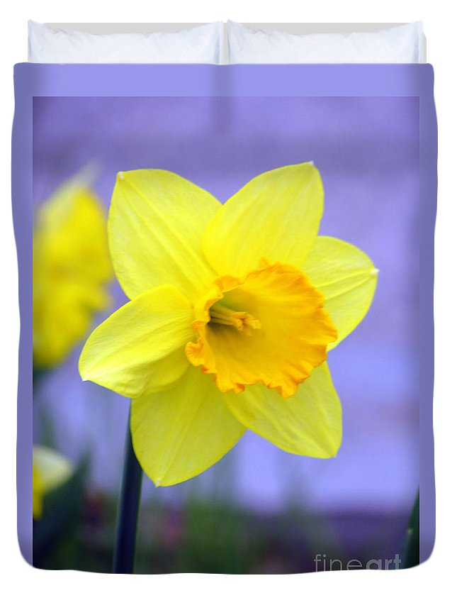 Jonquil Duvet Cover featuring the photograph Simplicity by Elizabeth Dow