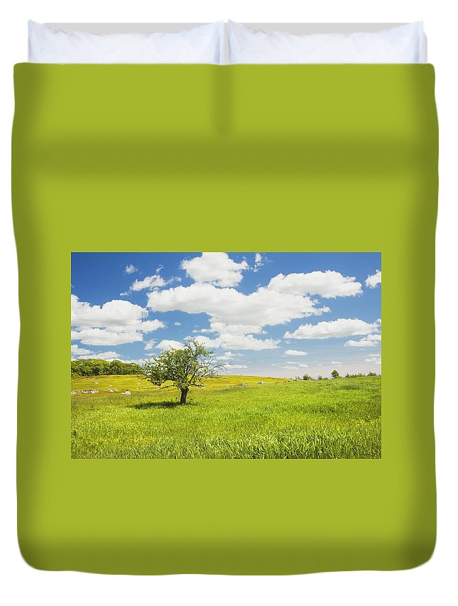 Field Duvet Cover featuring the photograph Single Apple Tree In Maine Blueberry Field by Keith Webber Jr