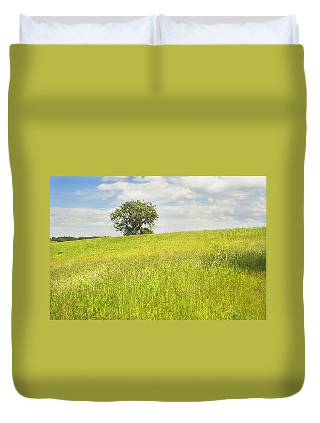 Field Duvet Cover featuring the photograph Single Apple Tree In Maine Hay Field by Keith Webber Jr