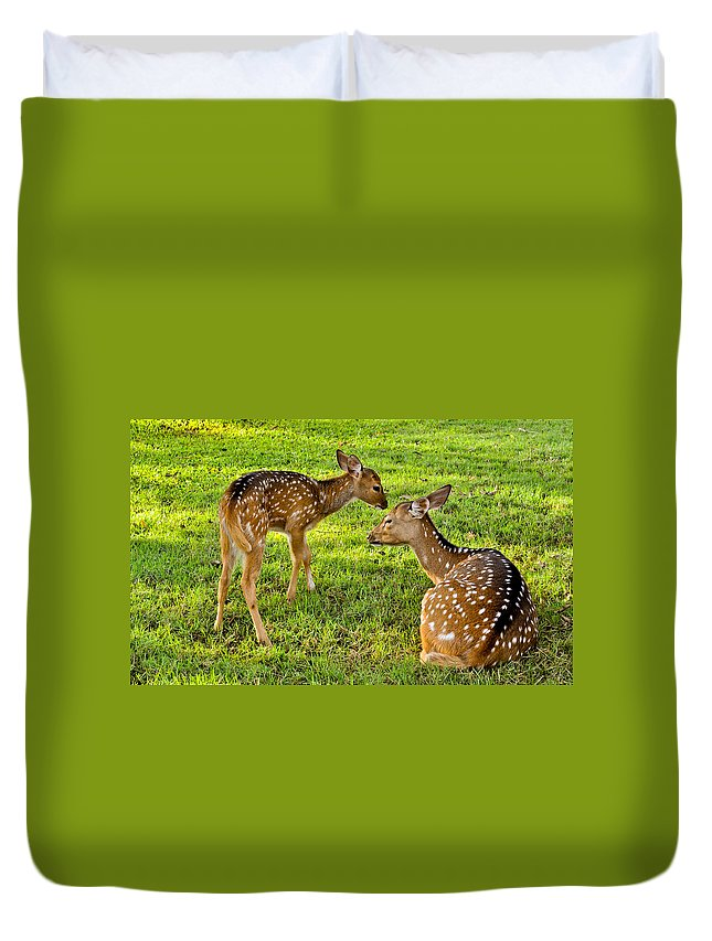Deer Duvet Cover featuring the photograph Single Parent by Wilson Chandra