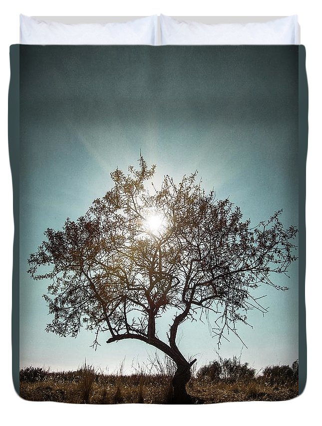 Dark Duvet Cover featuring the photograph Single Tree by Carlos Caetano