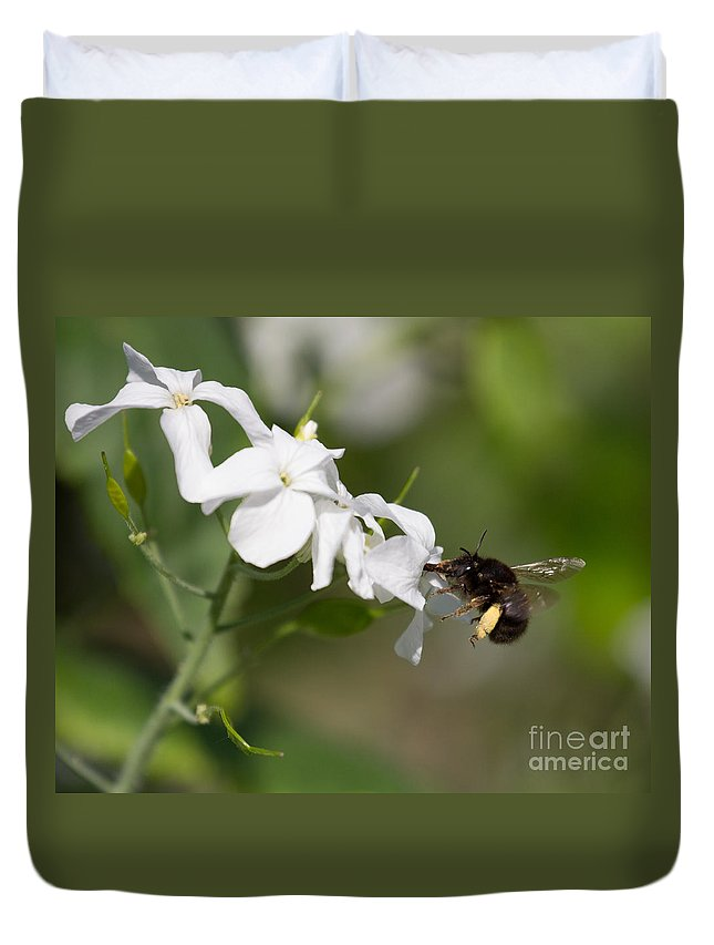 Macro Duvet Cover featuring the photograph Sipping Nectar by Kathryn Bell