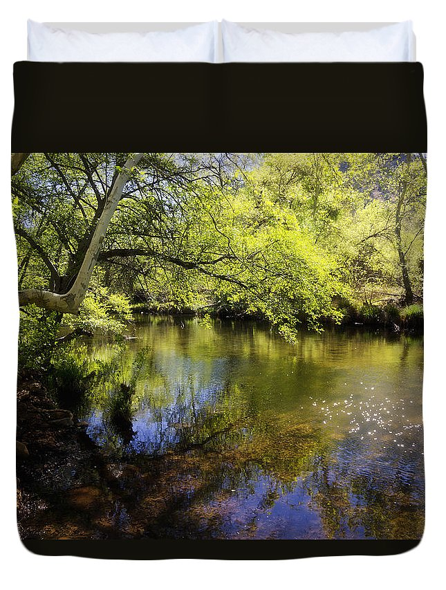 Creek Duvet Cover featuring the photograph Sitting By The Creek by Saija Lehtonen