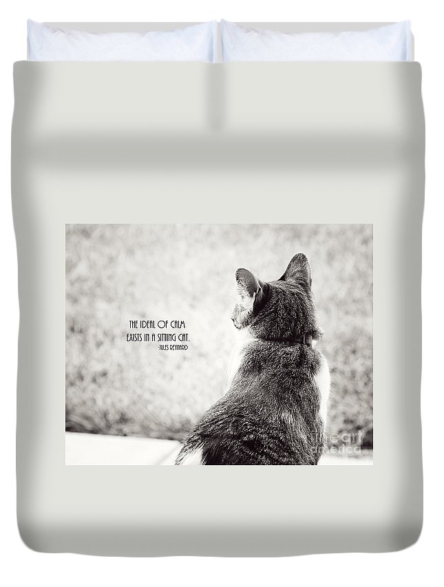 Cat Duvet Cover featuring the photograph Sitting Cat by Pam Holdsworth