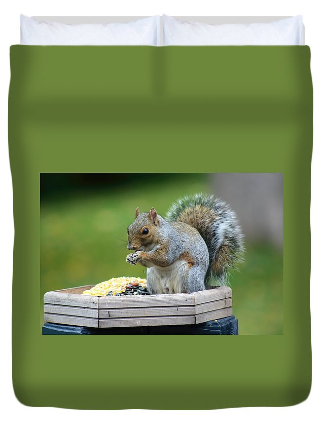 Amanda Stadther Duvet Cover featuring the photograph Sitting In My Dinner by Amanda Stadther