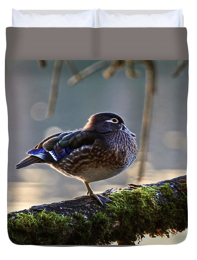 Duck Duvet Cover featuring the photograph Sitting Pretty by Steve McKinzie