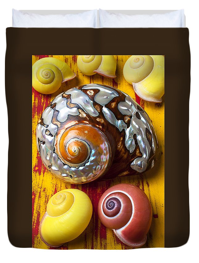 Six Duvet Cover featuring the photograph Six Snails Shells by Garry Gay