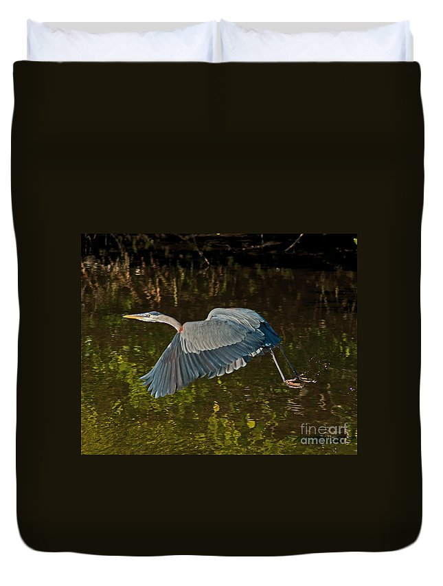 Great Heron Duvet Cover featuring the photograph Skimming Great Heron by Stephen Whalen