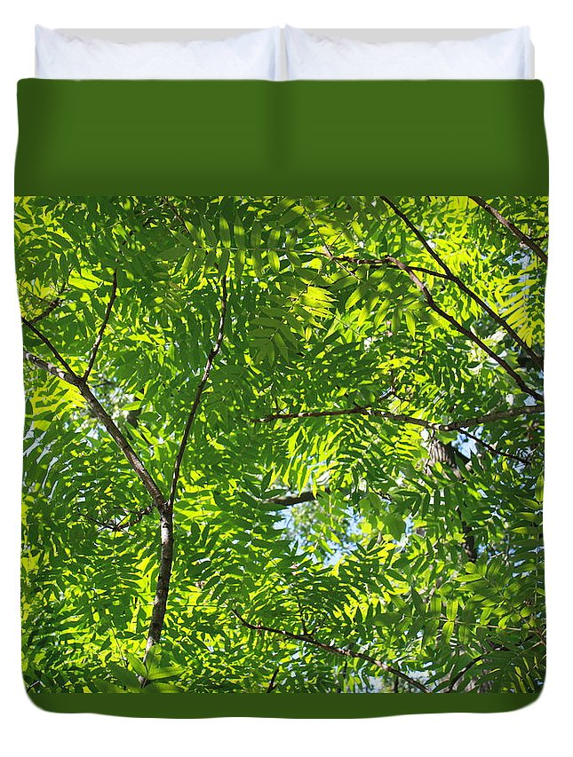 Tree Duvet Cover featuring the photograph Sky Laced by Deborah Crew-Johnson