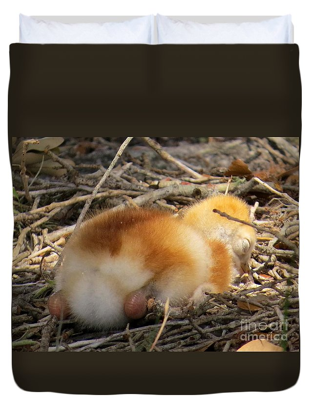 Chick Duvet Cover featuring the photograph Sleeping Chick by Zina Stromberg