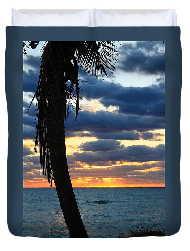 Jupiter Duvet Cover featuring the photograph Sleeping Palm by Catie Canetti