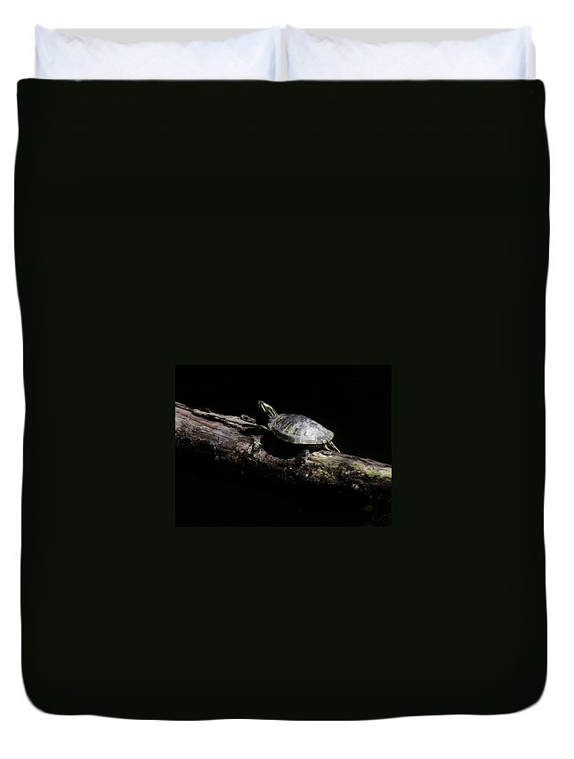 Slider Duvet Cover featuring the photograph Slider by Eric Noa