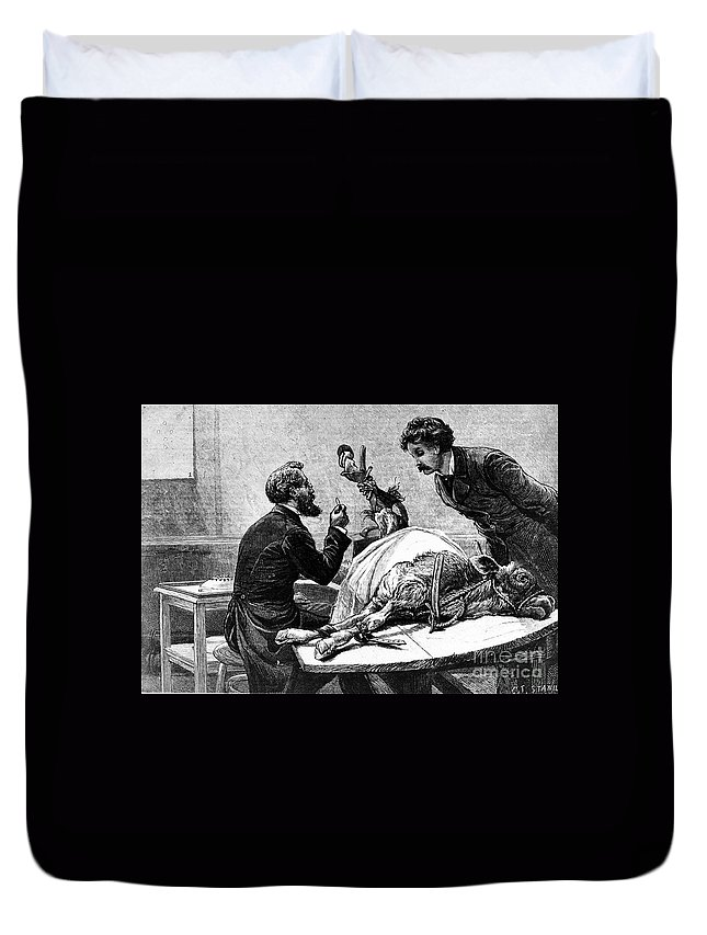1883 Duvet Cover featuring the photograph Smallpox Vaccine, 1883 by Granger