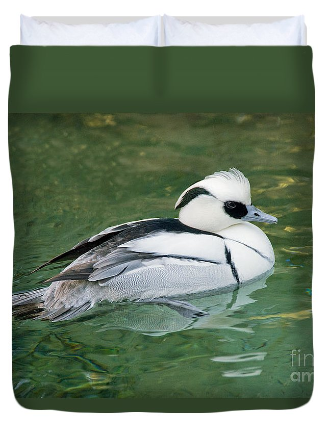 Nature Duvet Cover featuring the photograph Smew Drake by Anthony Mercieca