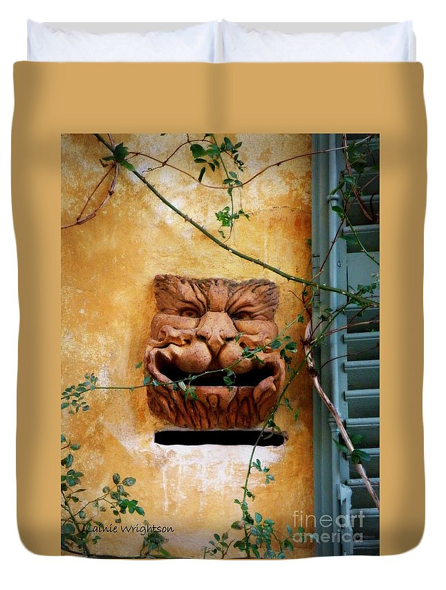 Mail Box Duvet Cover featuring the photograph Smiling Cat Mail Box by Lainie Wrightson