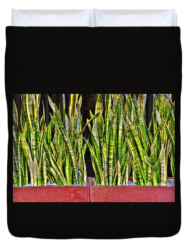 Photography Duvet Cover featuring the photograph Snakes In A Box by Paul Wear