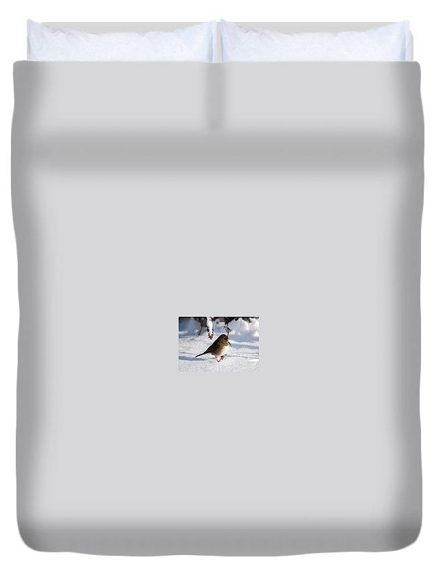 Snow Duvet Cover featuring the photograph Snow Bird by Todd Hostetter