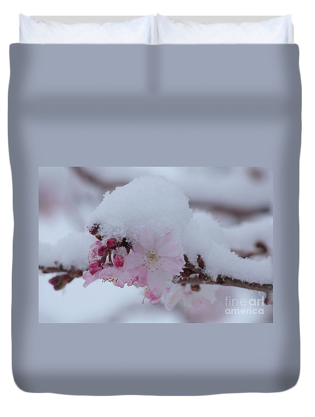 Cherry Blossoms Duvet Cover featuring the photograph Snow Covered Pink Cherry Blossoms by Luv Photography