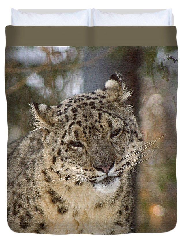 Snow Leopard Duvet Cover featuring the digital art Snow Leopard by Ernie Echols