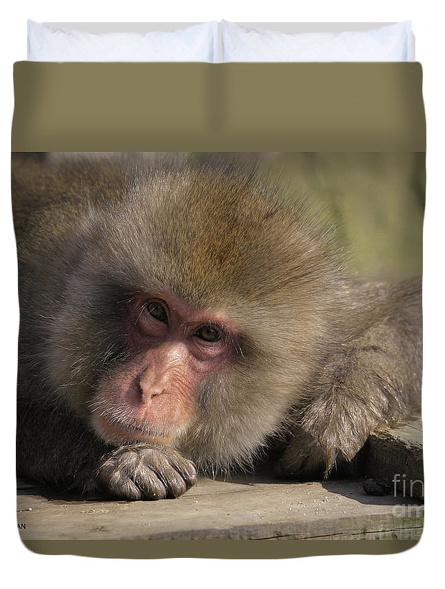 Japan Duvet Cover featuring the photograph Snow Monkeys-just Hanging Out by Robyn Saunders