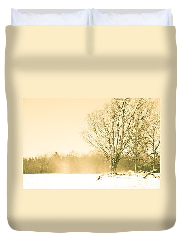 Landscapes Duvet Cover featuring the photograph Snow Of Old by Cheryl Baxter