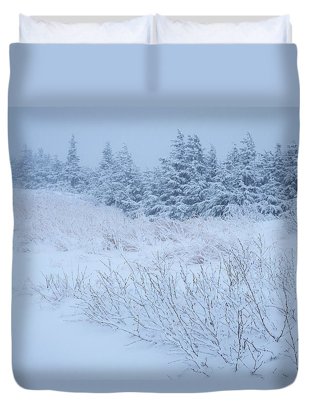 Alaska Duvet Cover featuring the photograph Snow On New Years Eve by Tim Newton