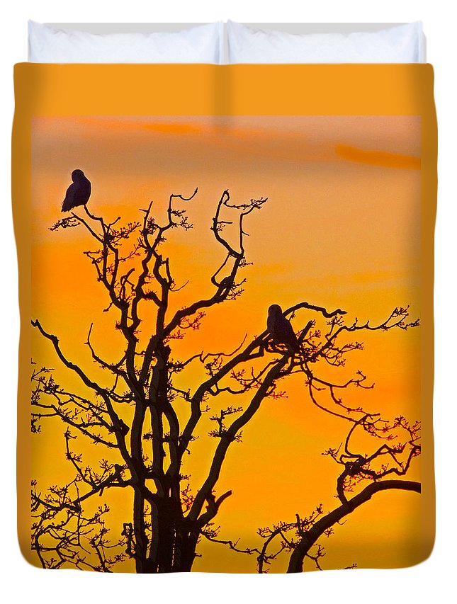 Snow Owl Duvet Cover featuring the photograph Snow Owl Silhouette by Rob Mclean