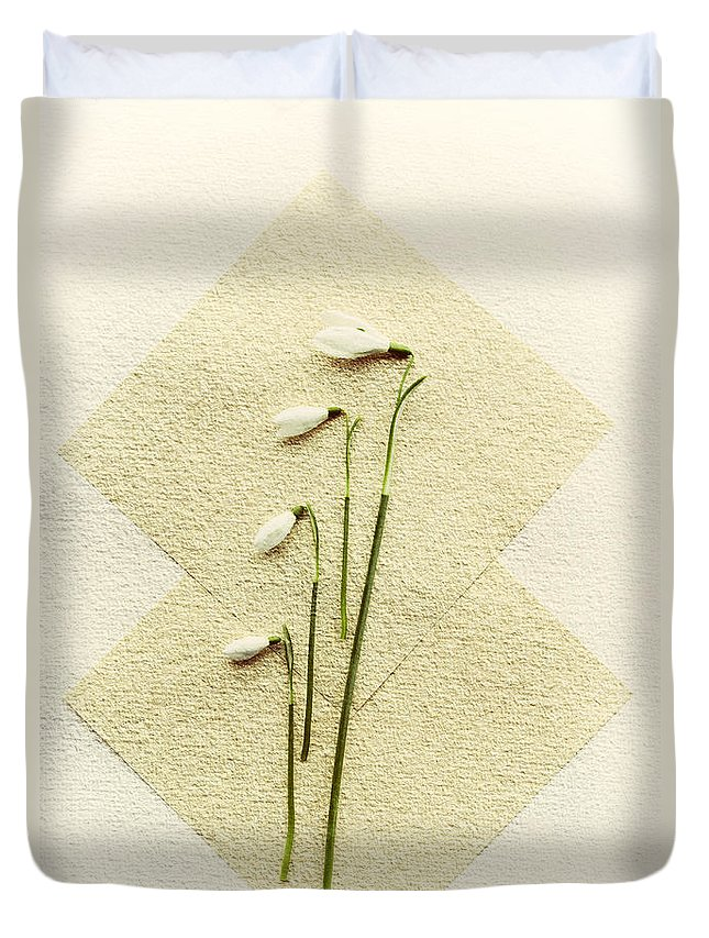 Spring Duvet Cover featuring the photograph Snowdrops by David Ridley