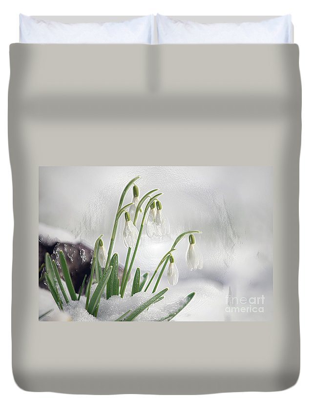 Snowdrops Duvet Cover featuring the photograph Snowdrops On Ice by Sharon Talson