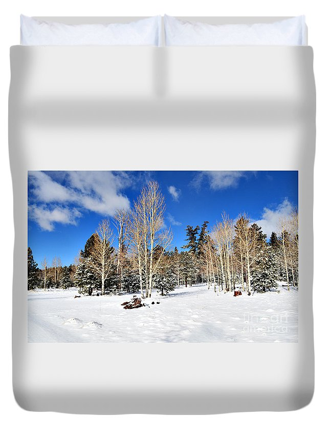 Snow Duvet Cover featuring the photograph Snowy Aspen Grove by Donna Greene