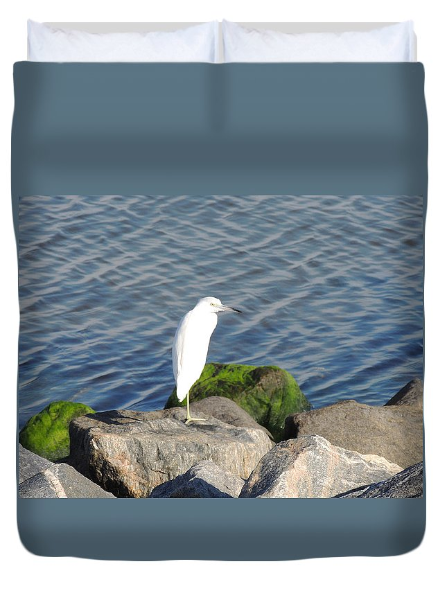 Duvet Cover featuring the photograph Snowy Egret by Marilyn Holkham
