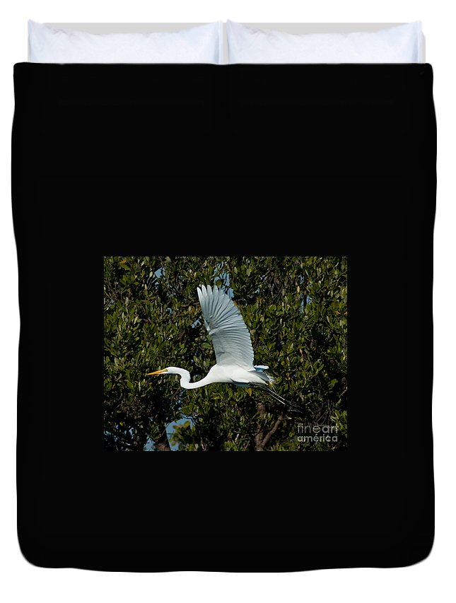 Snowy Egret Duvet Cover featuring the photograph Snowy Egret by Stephen Whalen