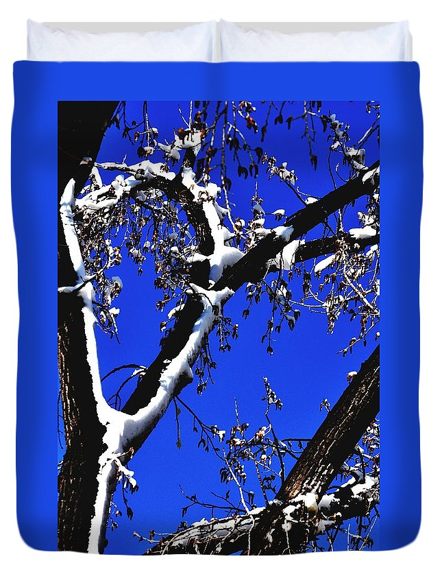 Season Duvet Cover featuring the photograph Snowy Limbs 14051 by Jerry Sodorff