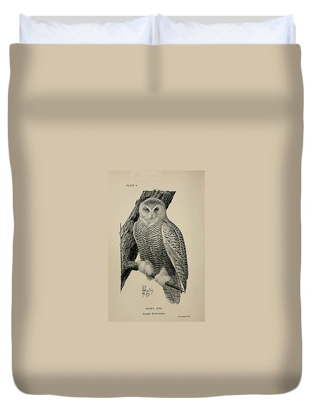 Snowy Duvet Cover featuring the painting Snowy Owl by Philip Ralley