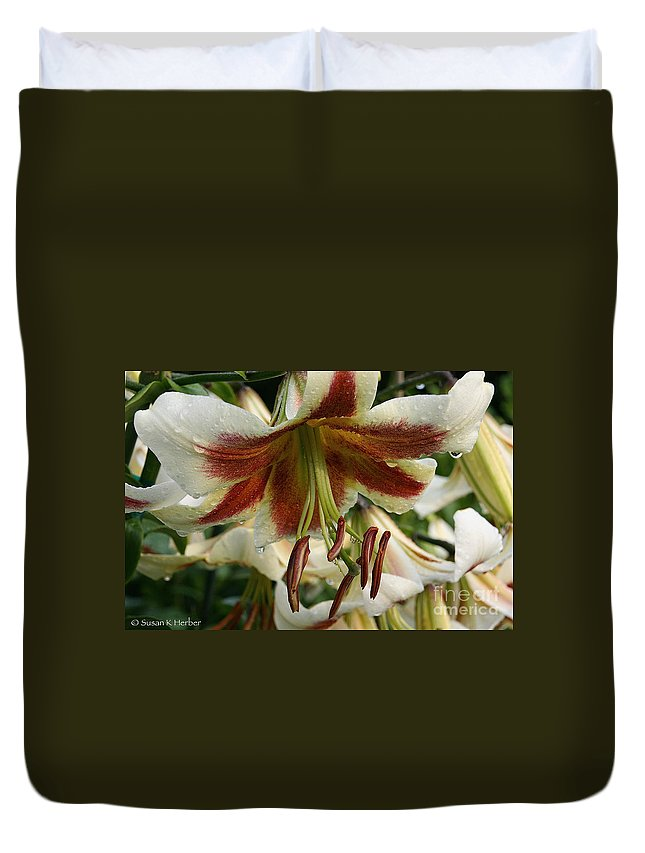 Flower Duvet Cover featuring the photograph Snowy Wet Sienna by Susan Herber