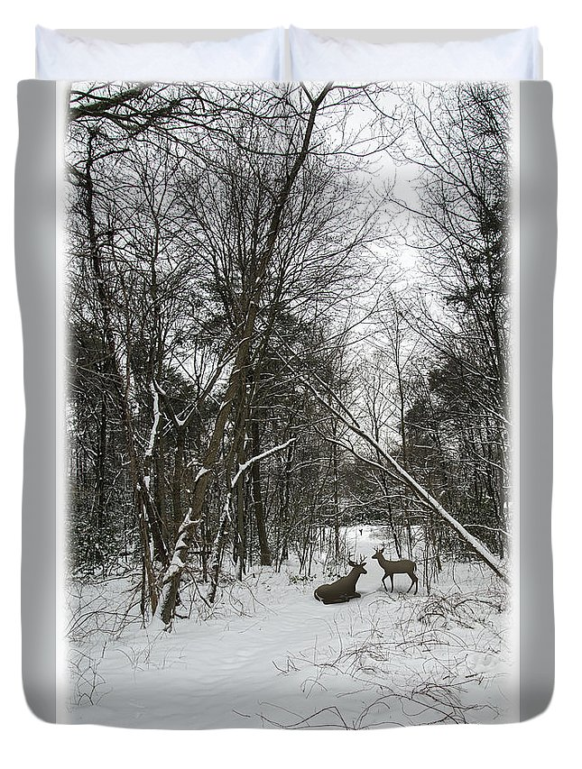 2d Duvet Cover featuring the photograph Snowy Wooded Path by Brian Wallace