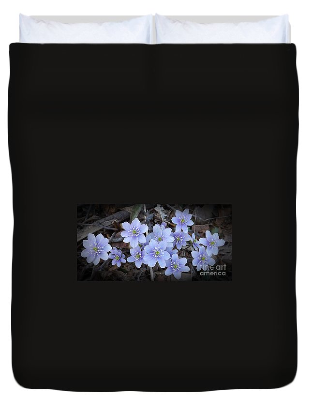 Flower Duvet Cover featuring the photograph So Beautiful by Sara Raber