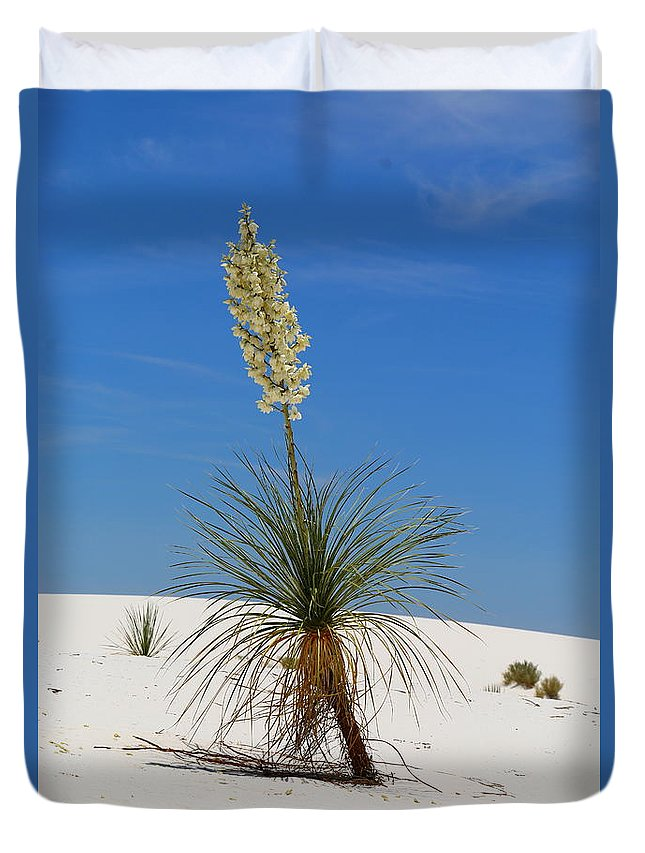 New Mexico Duvet Cover featuring the photograph Soap Yucca by Christiane Schulze Art And Photography