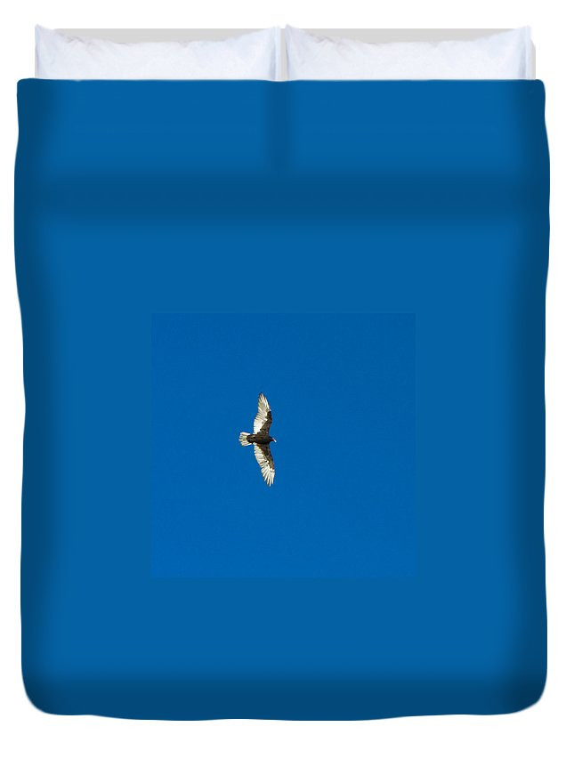 Bird Duvet Cover featuring the photograph Soaring by Omaste Witkowski
