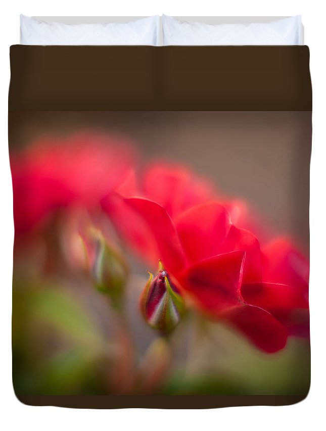 Flower Duvet Cover featuring the photograph Soaring Red Rosebud by Mike Reid